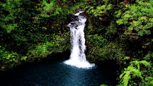 Maui Waterfall video