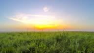T/L Meadow In The Sunrise video