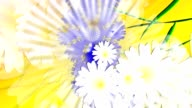 Meadow of wildflowers on sunny background.  Animation. Loop able File. video