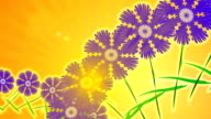 Meadow of wildflowers on sunny background.  Animation. video