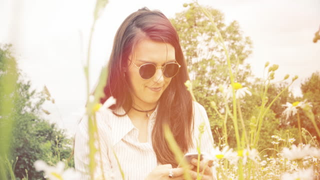 Meadow texting. Sunlight and lens flare. video