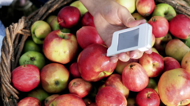 Measurement For The Content Of Nitrates In Apples video