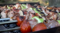 Meat and vegetables grilled on charcoal video