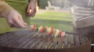Meat and vegetables on a grill video