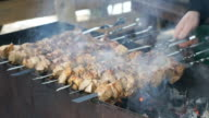 Meat are prepared on metal skewers on the coals video