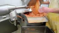 Meat chopper machine in food industry video