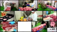 Meat Processing Plant - Multi Screen video