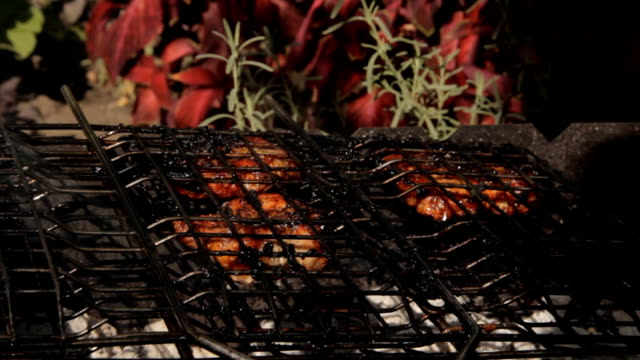 Meat roasted on a grill. Against the garden plants video