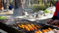 Meats and vegetables barbecue, grilled on open fire video