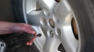 Mechanic Using Impact Wrench to Remove Wheel Lug Nuts video
