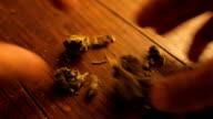 Medical Marijuana being handled on table video
