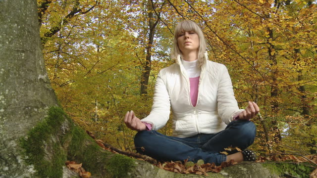 HD DOLLY: Meditating In Nature video