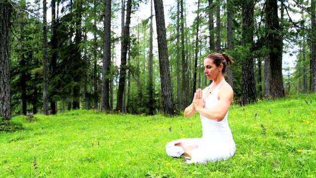 Meditation in the Forest video