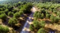 Mediterranean cycling   REC video