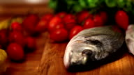 Mediterranean Fish Composition with camera panning video
