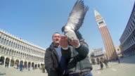 SLO MO Medium Shot couple feeding pigeons on St. Mark's Square. 120fps stock footage video