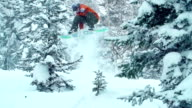 Melon Grab in Trees video