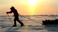 Members of polar expedition go skiing to the North Pole. video