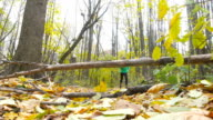 Men Jogging cross country And Jumping Over Obstacle running in forest. Training and exercising outdoors when cross country running in inspirational autumn landscape. Sports Motivation. Slow Motion. video