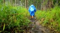 men walk on wooded path in rain video