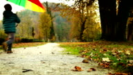 Merry little boy jumping in a park with multi-coloured umbrella video