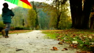 Merry little boy jumps with pied umbrella in autumn park video
