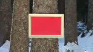 HD: Message Board In The Woods video