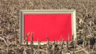 HD: Message Board On The Field video