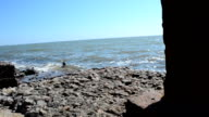 Metal column and sea video