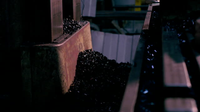 Metal shavings on the plant video