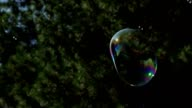 Metamorphosis of big soap Bubbles in Slow Motion video