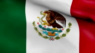 Mexican Flag Background Loop video