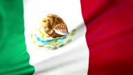 Mexican Flag loopable video