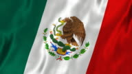 Mexican Flag Silk (Loop HD) video