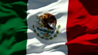 Mexican Flag video