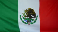 Mexico Flag real fabric close up video