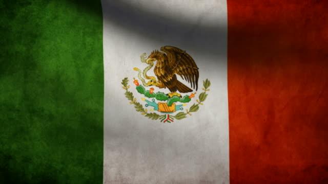 Mexico  flag. video
