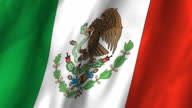 Mexico Flag - waving, looping video