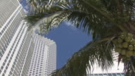 Miami Highrise Building video