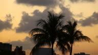 Miami sunset video