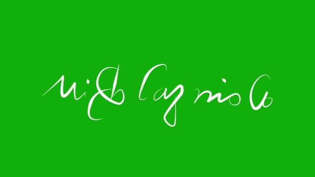 Michelangelo - Signature Animation on Green Screen video