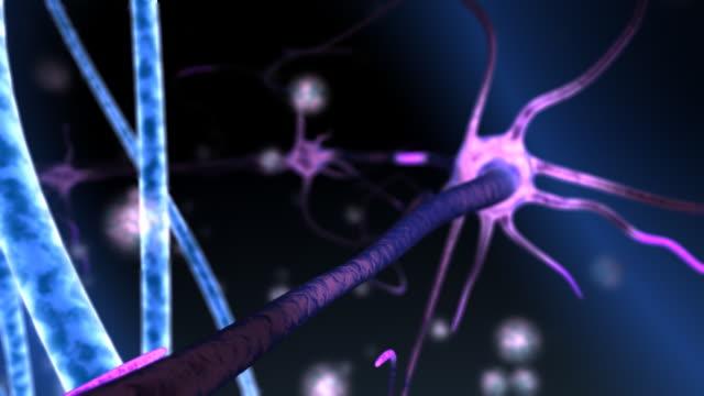 Micro world. Microcosm. Neurons. video