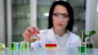 Microbiologist in the laboratory works with liquid preparation video