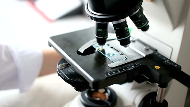 Microbiology laboratory, work with microscope video