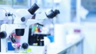 Microscope in laboratory video
