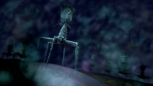 Microscopic view of bacteriophage. video