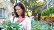 A mid-adult Caucasian woman smiles confidently at her choice of plant at farmer's market or plant nursery video