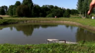 Middle-aged man make head jump into pond water from bridge video