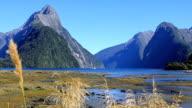 Milford Sound Landscape, South Island, New Zealand video