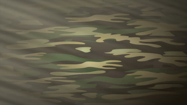 Military camouflage, video animation video